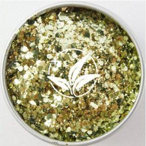 EcoStarDust Gold Digger Biodegradable Glitter