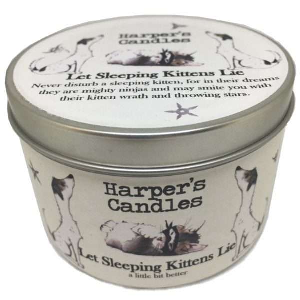 Harpers Candles Let Sleeping Kittens Lie Large