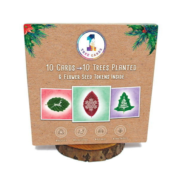 1 Tree Cards Leaf Moments Festive Box