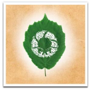 1 Tree Cards Leaf Moments Festive Box