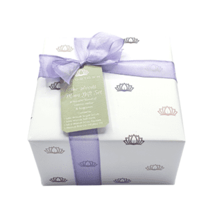 Bloomtown The Woods Minis Gift Set new