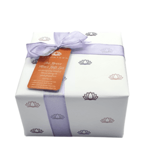 Bloomtown The Grove Minis Wrapped Gift Set