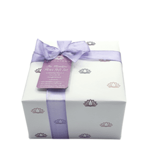 Bloomtown The Meadow Minis Wrapped Gift Set